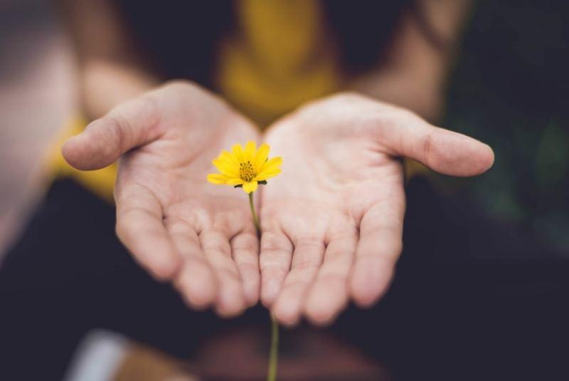 Meditation – Gehen – Liebe