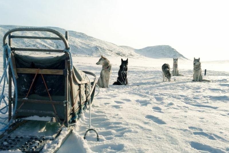Naturerlebnis & Yoga in Finnisch Lappland