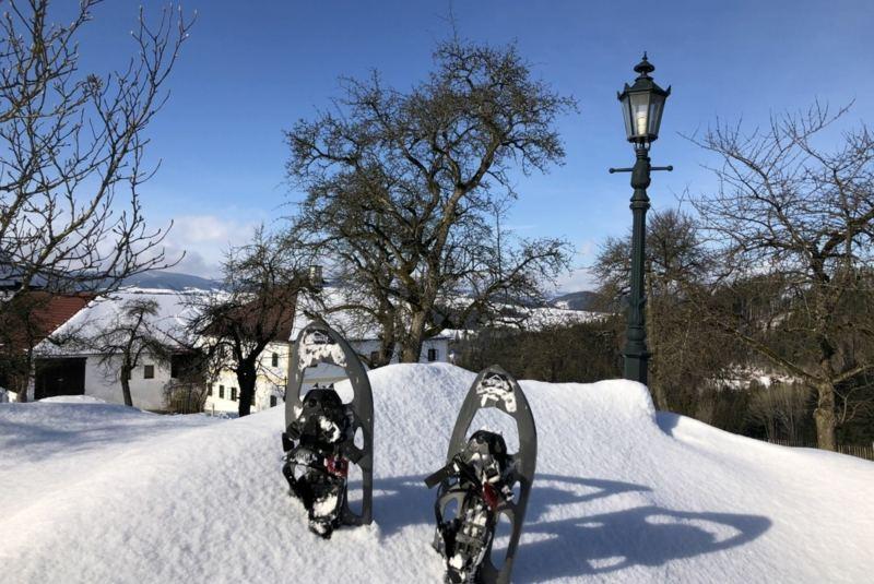 Yoga und Schneeschuhwandern im Mühlviertler Hügelland