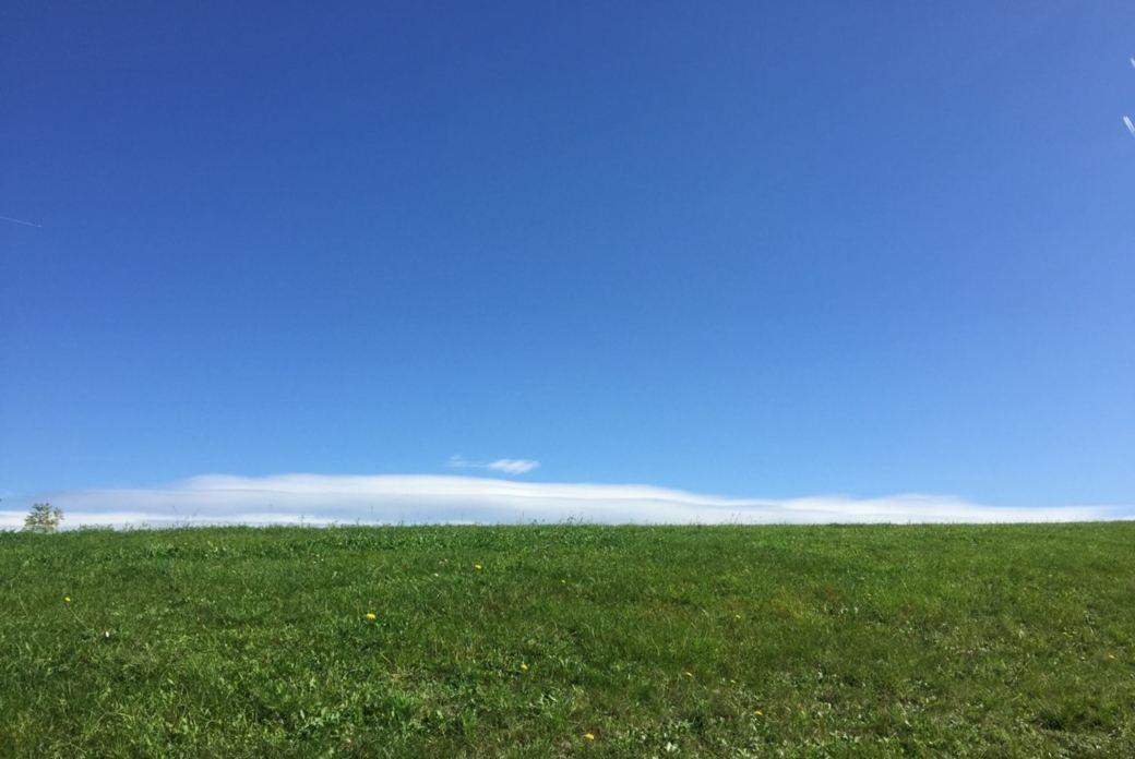 Die Natur des Atems – der Atem der Natur