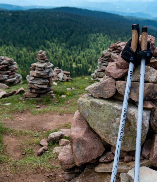 Yoga & Nordic Walking in Balance – Chiemgau
