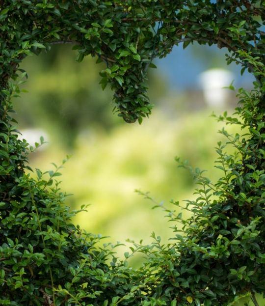 Experience your Heart im Mühlviertel