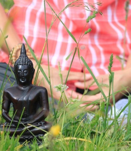 Buddhistische Weisheitslehre & Yoga im Sommer