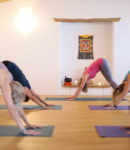 Yoga und Wandern im Winter